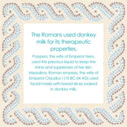 Donkey Milk in Rome